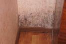 27.10.15 выезд в Стрелицу Семилукского района по поводу переселения в треснувший дом